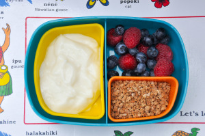 Back to School Lunches & a Giveaway!