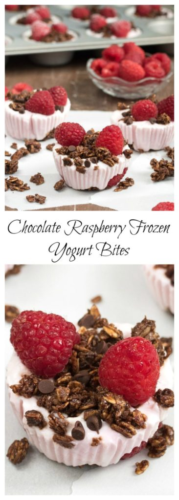 Chocolate Raspberry Frozen Yogurt Bites- keep in a zip lock bag in the freezer and grab one when you need it! #glutenfree #VantasticFoodies #Ad |www.nutritiouseats.com