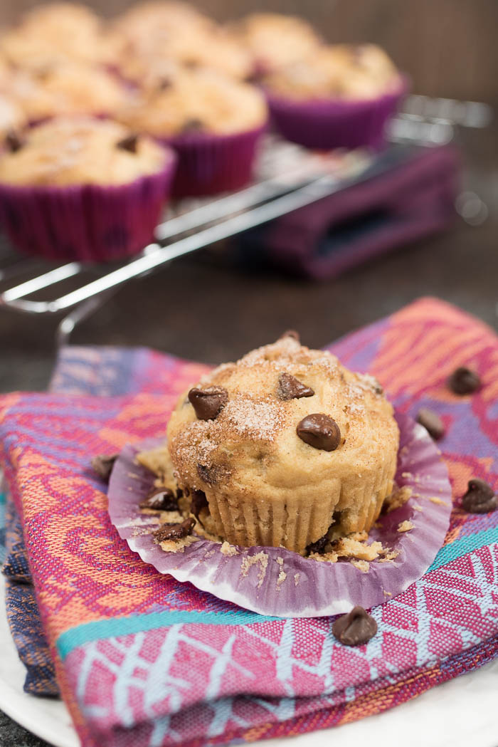 Chocolate Chip Greek Yogurt Muffins- a fun breakfast or snack for the kids, plus info on ways to get more Greek Yogurt into your child's diet! #glutenfree | www.nutritiouseats.com