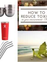 How To Reduce Toxins In Your Environment | www.nutritiouseats.com
